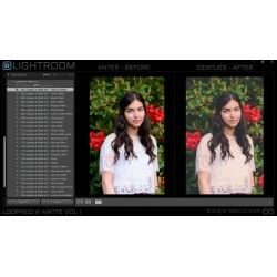 LoopNeo Matte Vol I Lightroom Presets